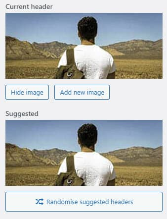 screenshot showing the custom header image settings