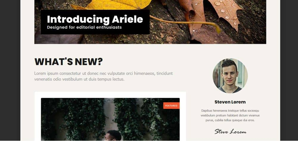 Ariele blog intro