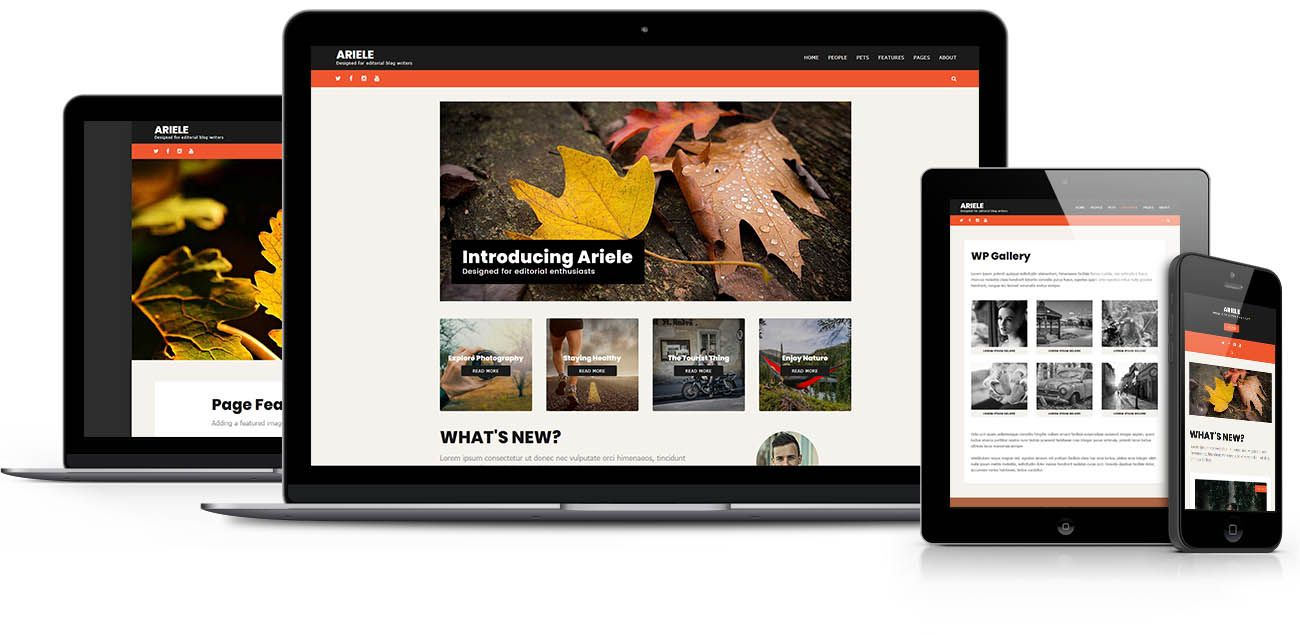 Ariele  WordPress theme