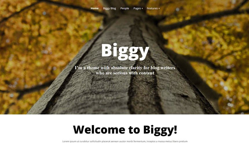 Biggy front page banner example