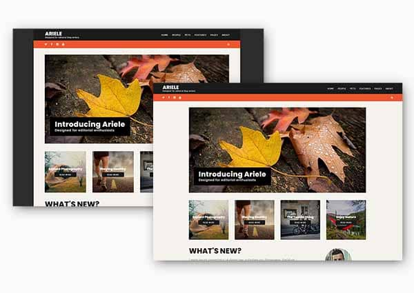 Ariele full width or boxed layout