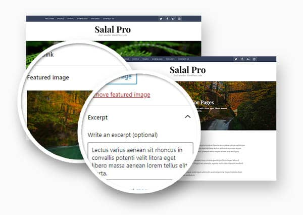 screenshot showing the photo cover images with post titles in Salal