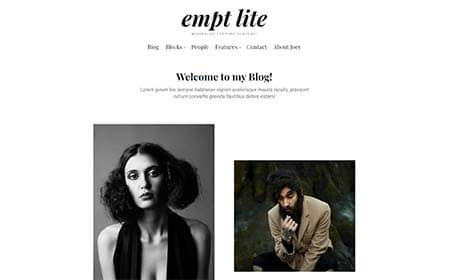 Empt Lite - a free WordPress theme