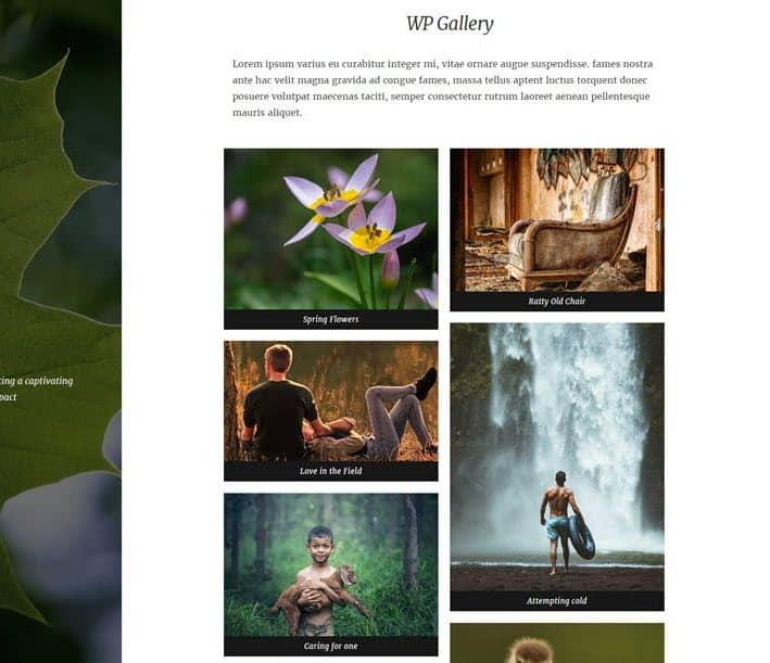 Natured Masonry gallery layout example