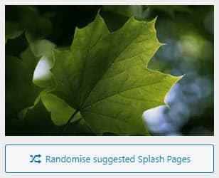 Splash image thumbnail